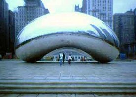The Kidney Bean