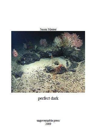 Perfect Dark by Susan Maurer